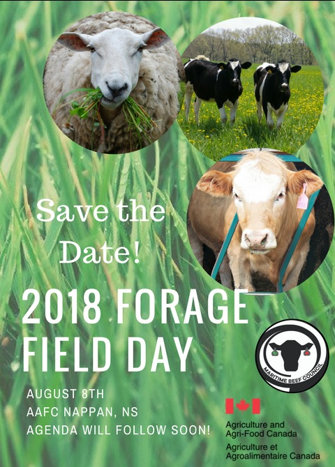 Field Forage Day